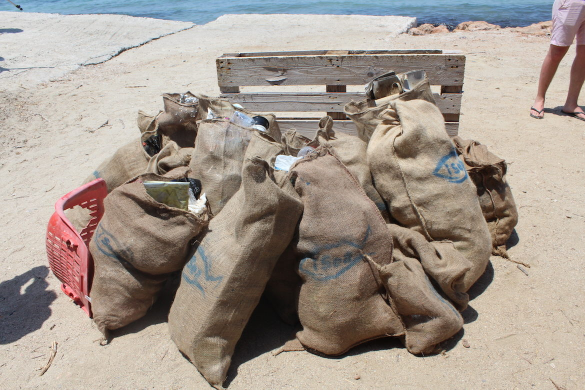 North American University Students of Greek Descent Organize Beach Clean-up in Greece